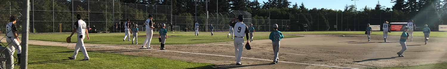 White Rock South Surrey Baseball