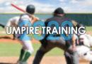 Be a Baseball Umpire!